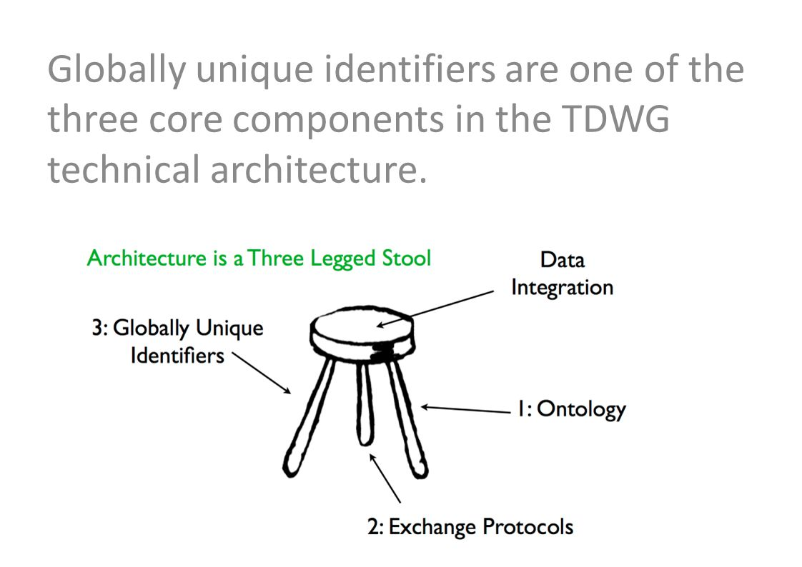 Globally unique identifiers are one of the three core components in the TDWG technical architecture.