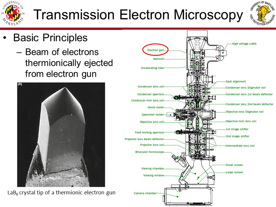 4/36 Transmission Electron Microscopy Basic Principles –Beam travels down evacuated column (10 -4 Pa) through aperture and electro- magnetic lens before reaching specimen Electromagnetic lens schematic