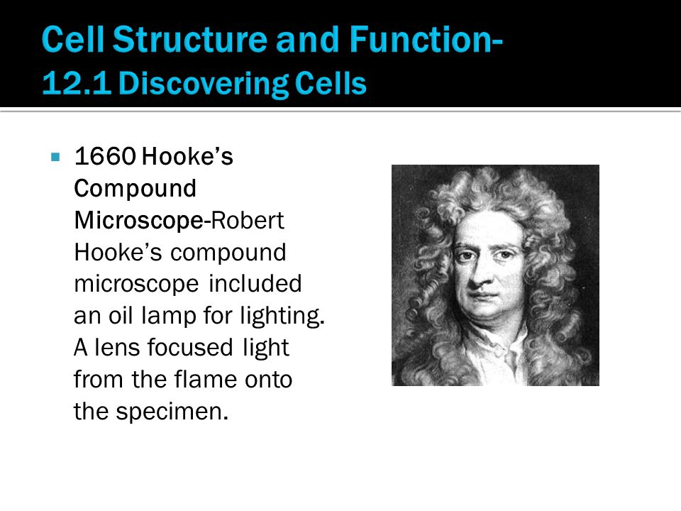  1660 Hooke's Compound Microscope-Robert Hooke's compound microscope included an oil lamp for lighting.