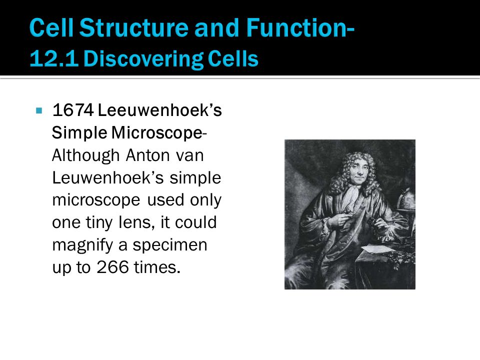  1674 Leeuwenhoek's Simple Microscope- Although Anton van Leuwenhoek's simple microscope used only one tiny lens, it could magnify a specimen up to 2