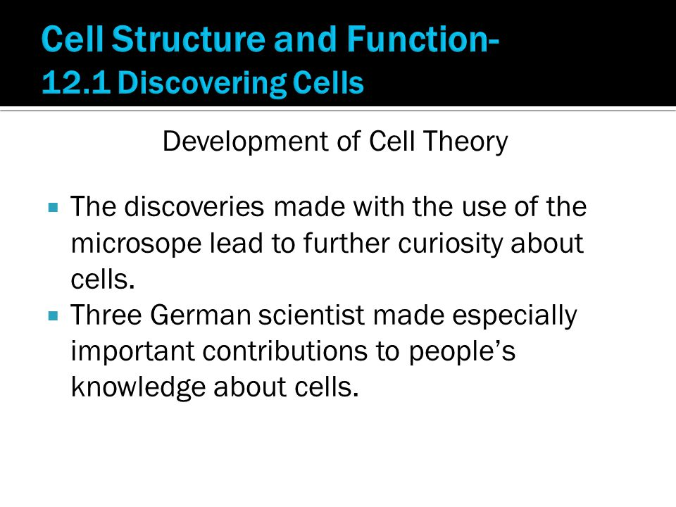  The discoveries made with the use of the microsope lead to further curiosity about cells.  Three German scientist made especially important contrib