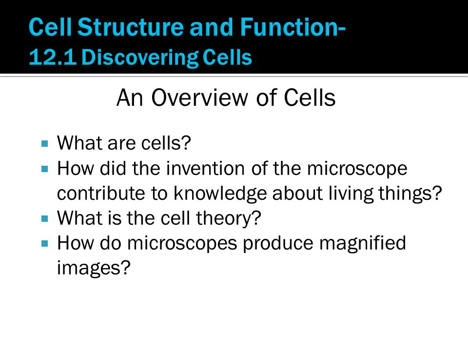 What are cells?  How did the invention of the microscope contribute to knowledge about living things?  What is the cell theory?  How do microscop