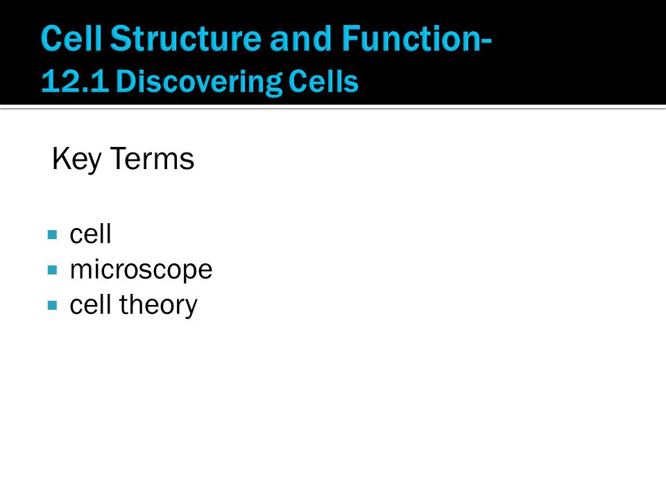  cell  microscope  cell theory Key Terms