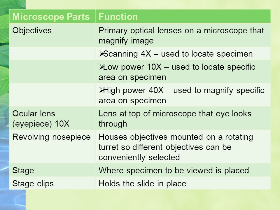 Microscope PartsFunction ObjectivesPrimary optical lenses on a microscope that magnify image  Scanning 4X – used to locate specimen  Low power 10X – used to locate specific area on specimen  High power 40X – used to magnify specific area on specimen Ocular lens (eyepiece) 10X Lens at top of microscope that eye looks through Revolving nosepieceHouses objectives mounted on a rotating turret so different objectives can be conveniently selected StageWhere specimen to be viewed is placed Stage clipsHolds the slide in place