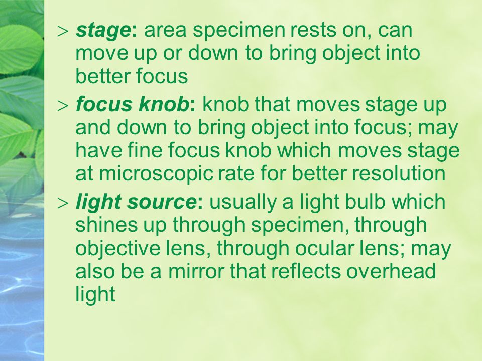  stage: area specimen rests on, can move up or down to bring object into better focus  focus knob: knob that moves stage up and down to bring object into focus; may have fine focus knob which moves stage at microscopic rate for better resolution  light source: usually a light bulb which shines up through specimen, through objective lens, through ocular lens; may also be a mirror that reflects overhead light