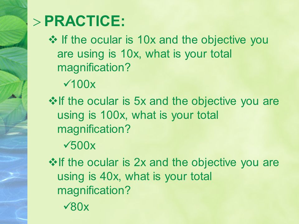  PRACTICE:  If the ocular is 10x and the objective you are using is 10x, what is your total magnification.