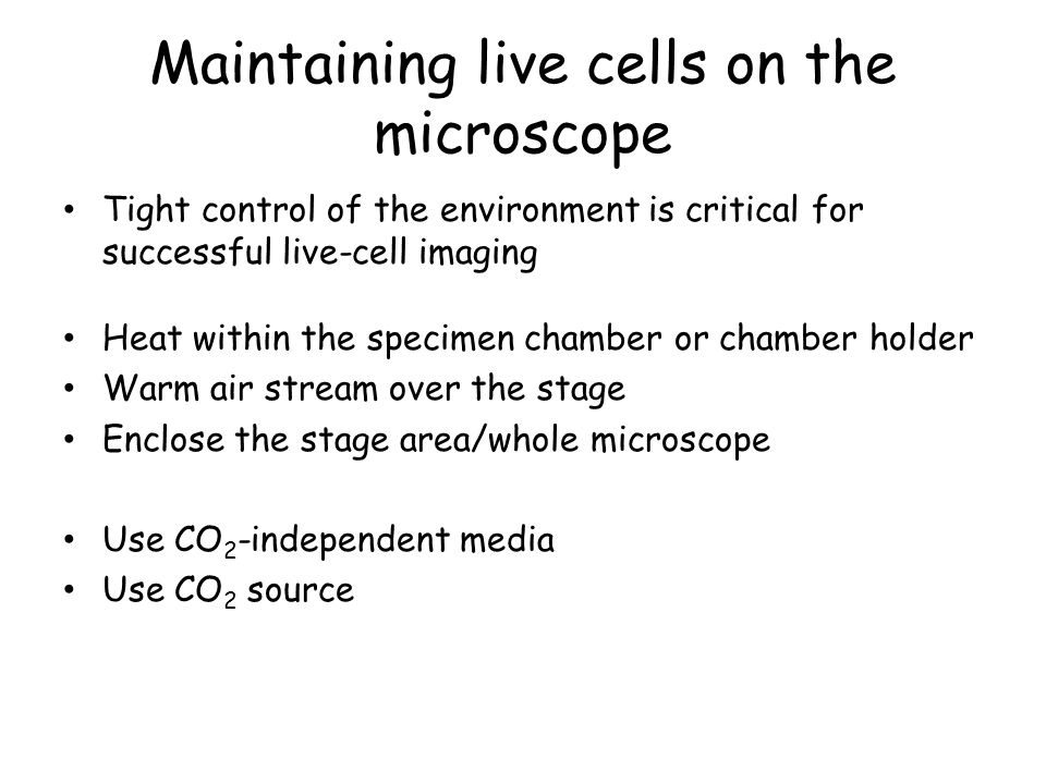 Maintaining live cells on the microscope Tight control of the environment is critical for successful live-cell imaging Heat within the specimen chamber or chamber holder Warm air stream over the stage Enclose the stage area/whole microscope Use CO 2 -independent media Use CO 2 source