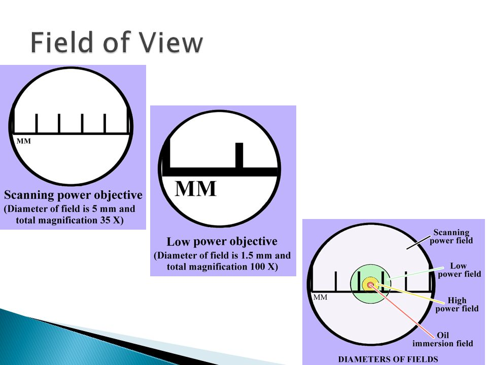  1millimeter = 1000 micrometers  What is the symbol for millimeters.
