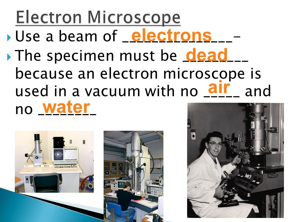  Use a beam of _______________-  The specimen must be _________ because an electron microscope is used in a vacuum with no _____ and no ________ electrons dead air water