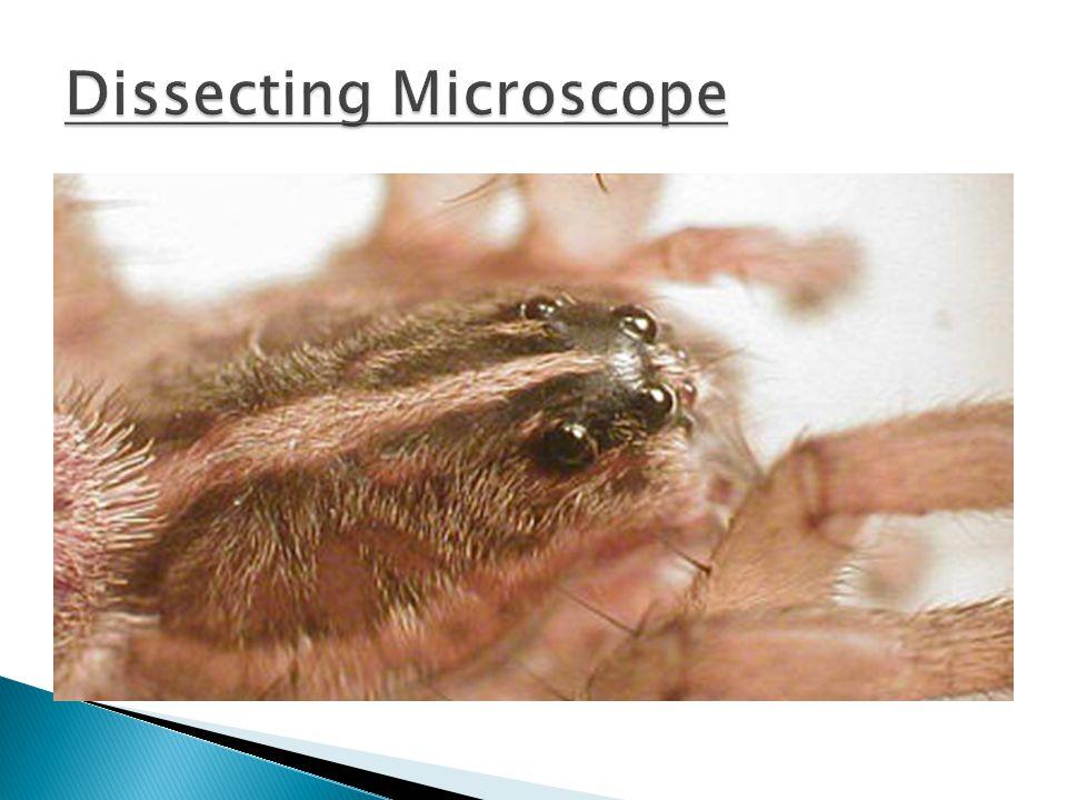 8.Make sure the specimen is ______________ 9.