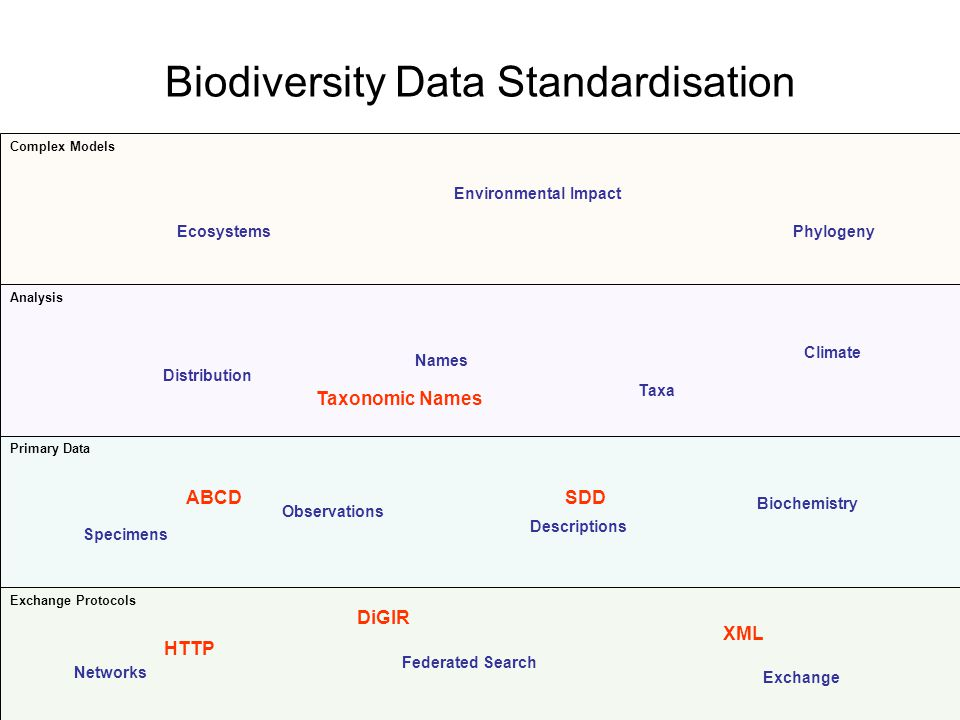Biodiversity Data Standardisation Exchange Protocols Primary Data Analysis Complex Models Networks Exchange Federated Search Specimens Observations Descriptions Biochemistry Distribution Names Taxa Climate EcosystemsPhylogeny Environmental Impact DiGIR XML HTTP SDDABCD Taxonomic Names