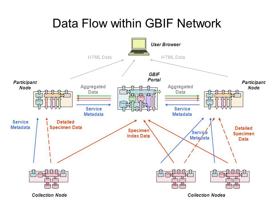 Data Flow within GBIF Network Collection NodeCollection Nodes GBIF Portal Participant Node Service Metadata Participant Node Service Metadata Specimen Index Data Detailed Specimen Data Aggregated Data Detailed Specimen Data Aggregated Data User Browser HTML Data Service Metadata