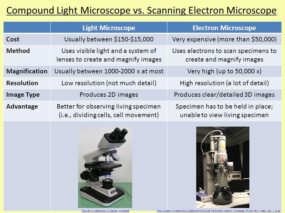 Compound Light Microscope vs.