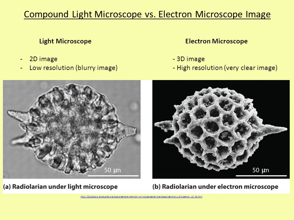 Compound Light Microscope vs. Electron Microscope Image http://2012books.lardbucket.org/books/general-chemistry-principles-patterns-and-applications-v