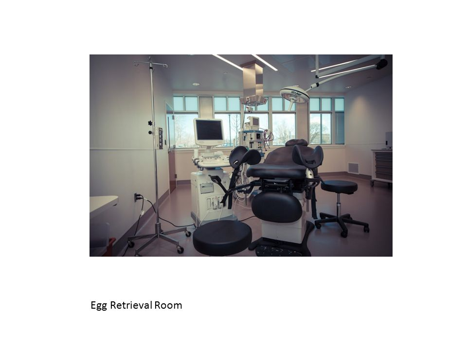 Egg Retrieval Room