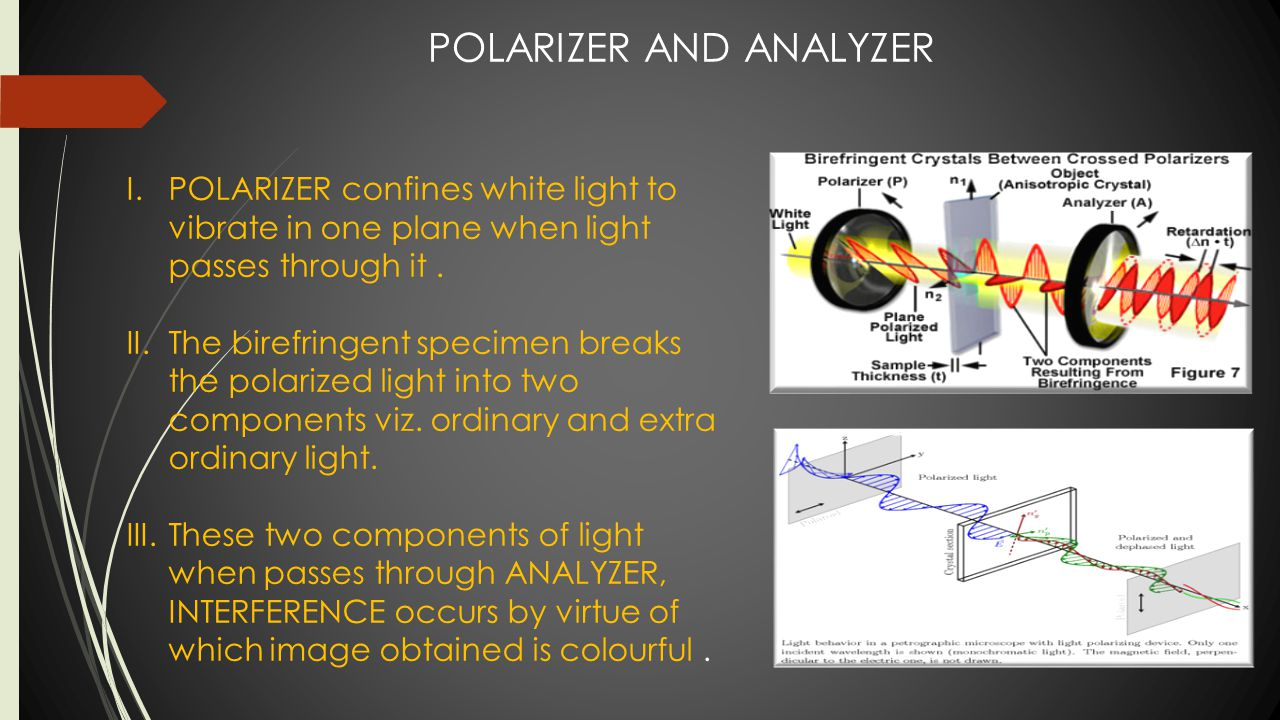 DIFFERENCE BETWEEN SIMPLE MICROSCOPE AND POLARISED LIGHT MICROSCOPE  SIMPLE LIGHT MICROSCOPE  It has polarizer and analyzer.