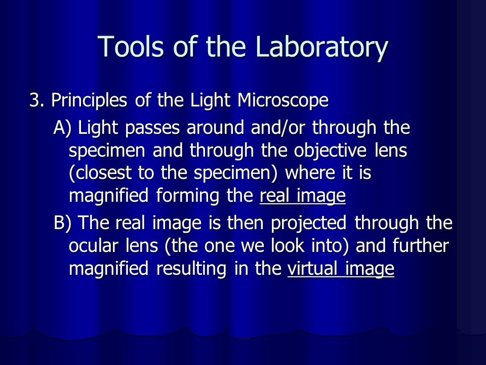 Tools of the Laboratory 3. Principles of the Light Microscope A) Light passes around and/or through the specimen and through the objective lens (close