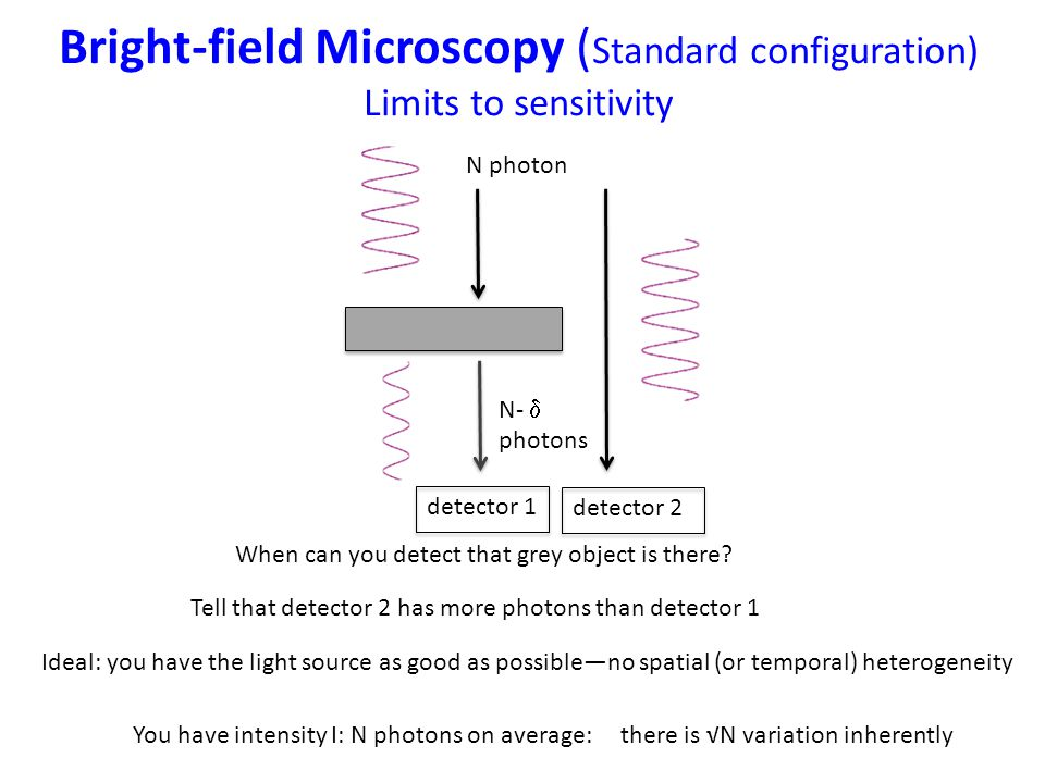 Bright-field Microscopy ( Standard configuration) Limits to sensitivity When can you detect that grey object is there.