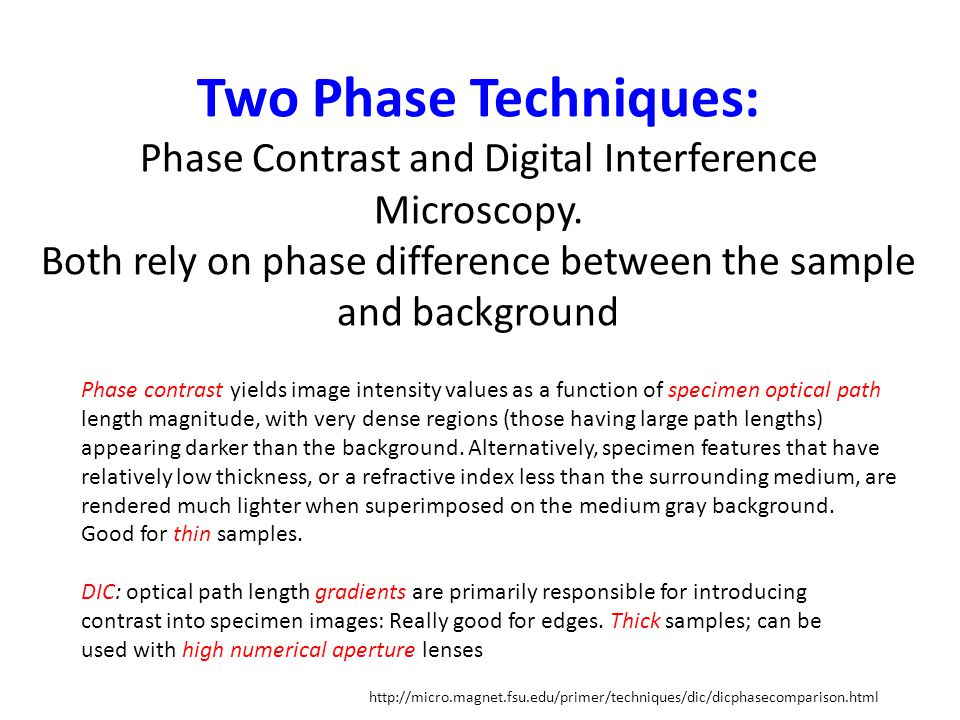 Two Phase Techniques: Phase Contrast and Digital Interference Microscopy.