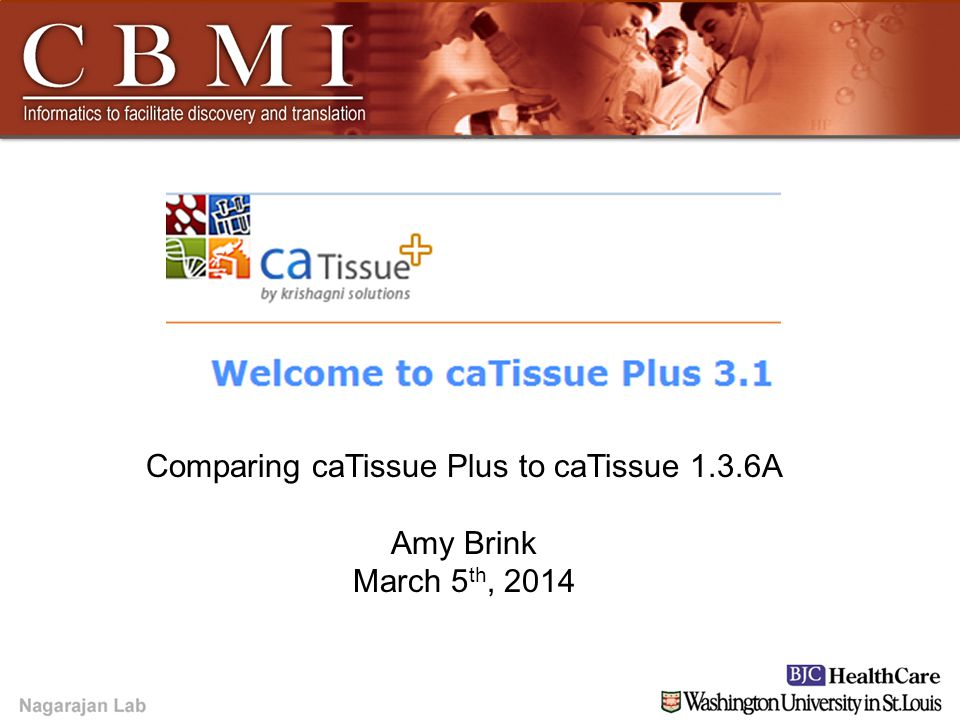 YOUR LOGO HERE YOUR LOGO HERE Amy Brink Comparing caTissue Plus to caTissue 1.3.6A Amy Brink March 5 th, 2014