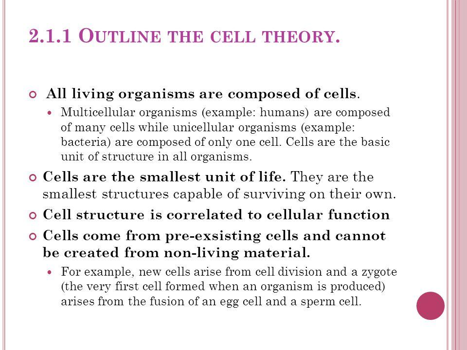 Stem cells (in bone marrow) Myeloid stem cells Lymphoid stem cells B cellsT cells Lymphocytes Erythrocytes Neutrophils Basophils Eosinophils Platelets Monocytes F IGURE 42.19