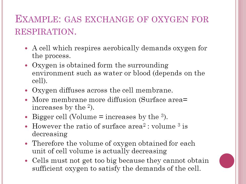 E XAMPLE : GAS EXCHANGE OF OXYGEN FOR RESPIRATION. A cell which respires aerobically demands oxygen for the process. Oxygen is obtained form the surro