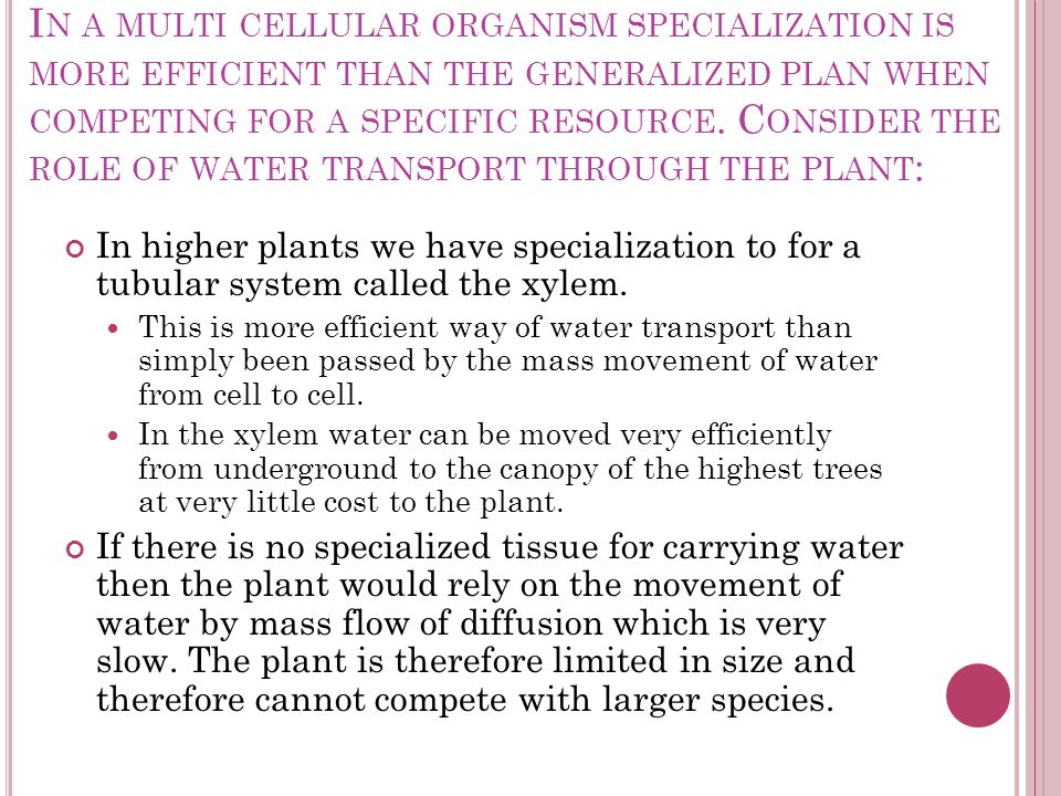 I N A MULTI CELLULAR ORGANISM SPECIALIZATION IS MORE EFFICIENT THAN THE GENERALIZED PLAN WHEN COMPETING FOR A SPECIFIC RESOURCE. C ONSIDER THE ROLE OF