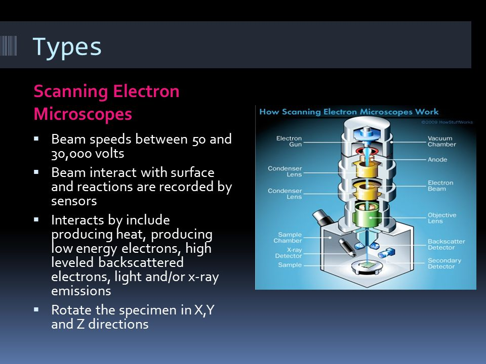 Types Scanning Electron Microscopes  Beam speeds between 50 and 30,000 volts  Beam interact with surface and reactions are recorded by sensors  Int