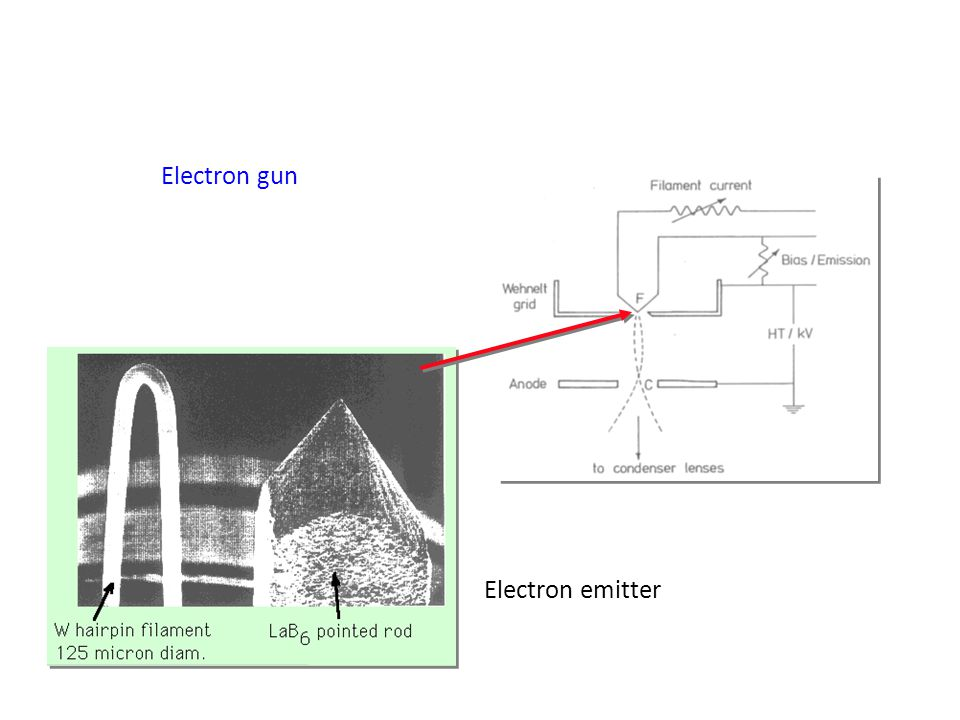 Effects of increasing voltage in electron gun: Resolution increased ( decreased) Penetration increases Specimen charging increases (insulators) Specimen damage increases Image contrast decreases = h/(2m electron qV o + q 2 Vo 2 /c 2 ))