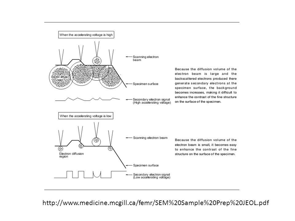 http://www.medicine.mcgill.ca/femr/SEM%20Sample%20Prep%20JEOL.pdf