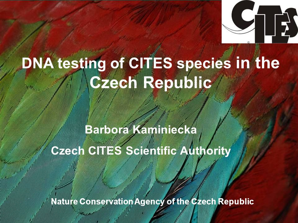 DNA testing of CITES species in the Czech Republic Barbora Kaminiecka Czech CITES Scientific Authority Nature Conservation Agency of the Czech Republic