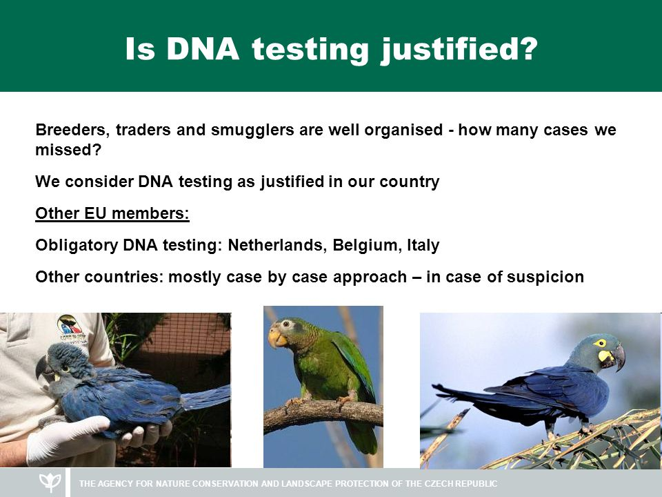 Is DNA testing justified.