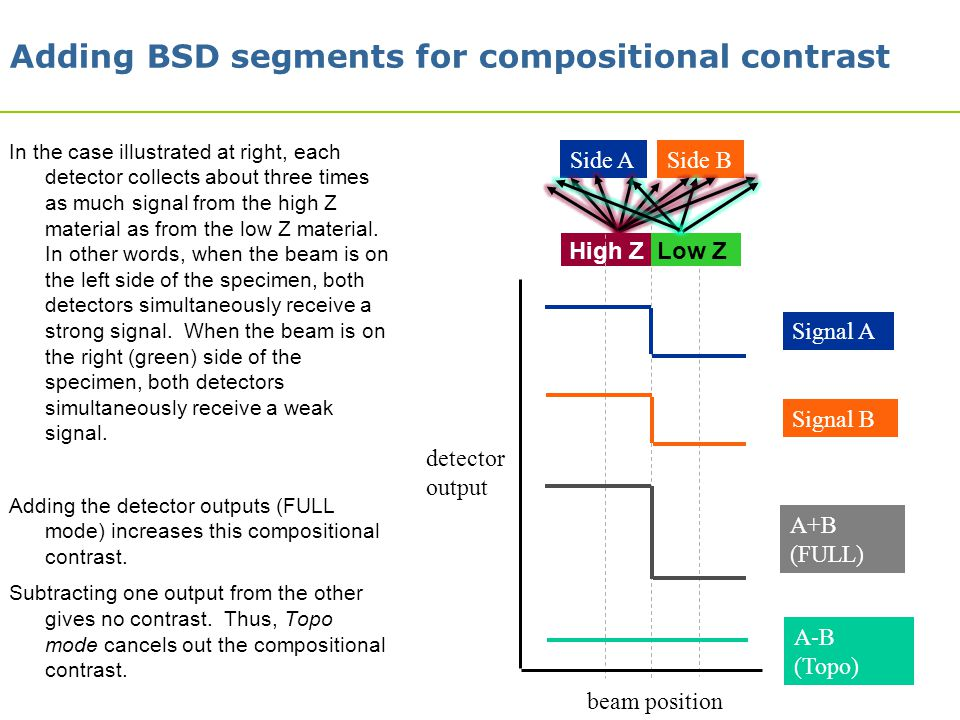 18 Side ASide B Signal A Signal B A+B (FULL) A-B (Topo) High Z Low Z Adding BSD segments for compositional contrast In the case illustrated at right,