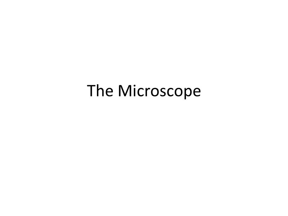 Diameter of a Microscopic Field As you increase magnification, the field decreases Knowing the field size can tell you the size of your specimen