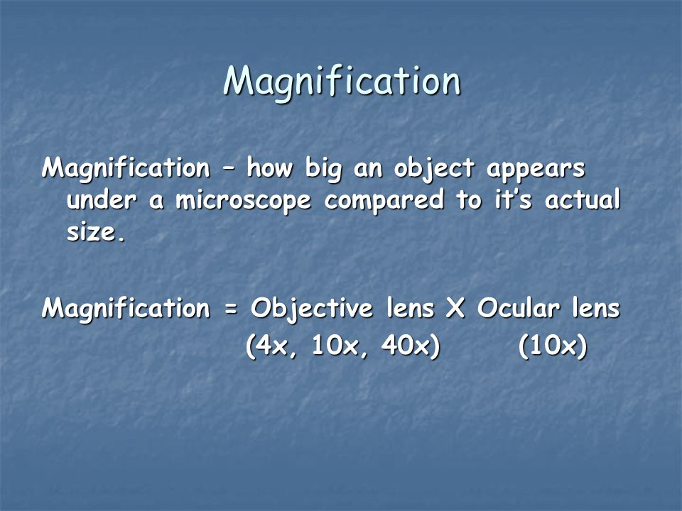 Magnification Magnification – how big an object appears under a microscope compared to it's actual size.