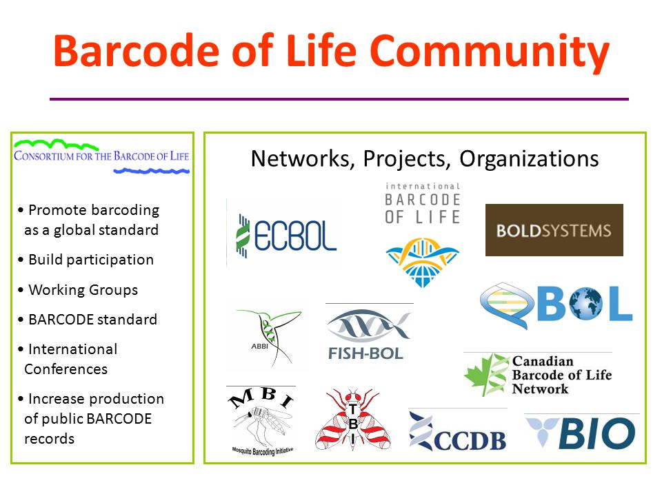 Promote barcoding as a global standard Build participation Working Groups BARCODE standard International Conferences Increase production of public BARCODE records Networks, Projects, Organizations Barcode of Life Community