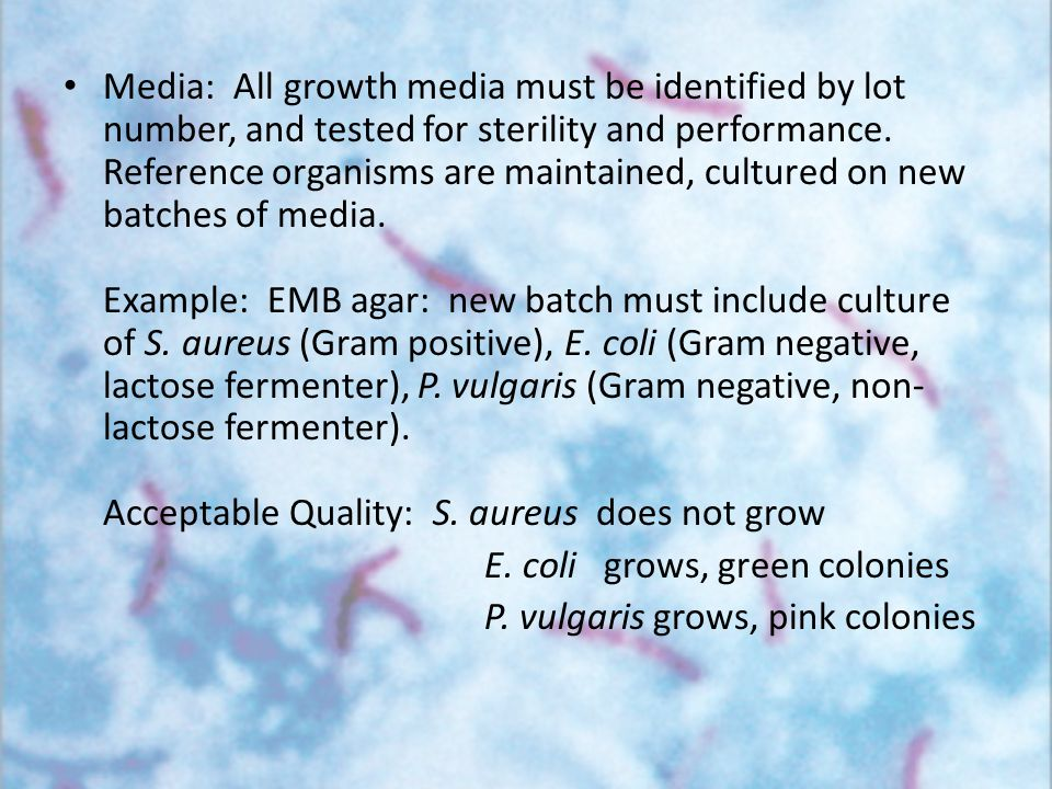 Media: All growth media must be identified by lot number, and tested for sterility and performance. Reference organisms are maintained, cultured on ne