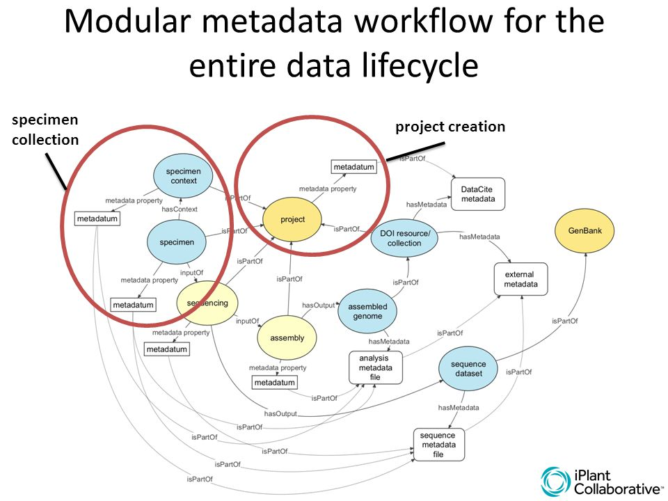 Modular metadata workflow for the entire data lifecycle specimen collection project creation