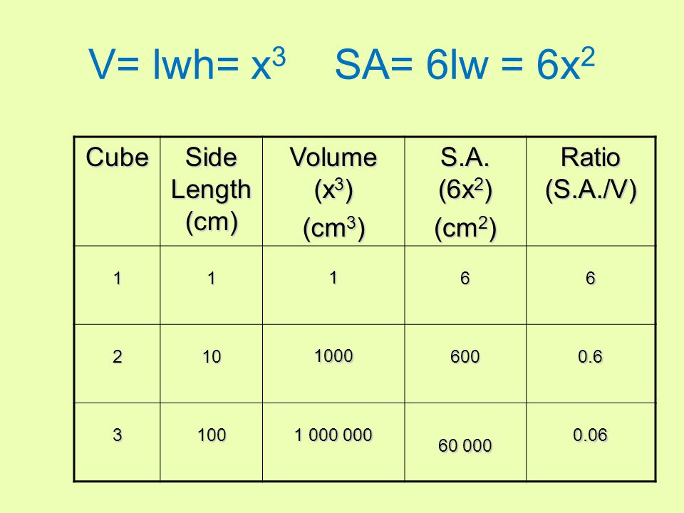 Cube Side Length (cm) Volume (x 3 ) (cm 3 ) S.A.