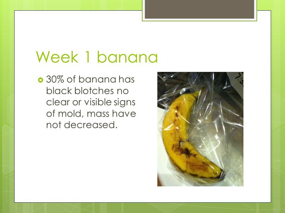 Week 1 banana  30% of banana has black blotches no clear or visible signs of mold, mass have not decreased.