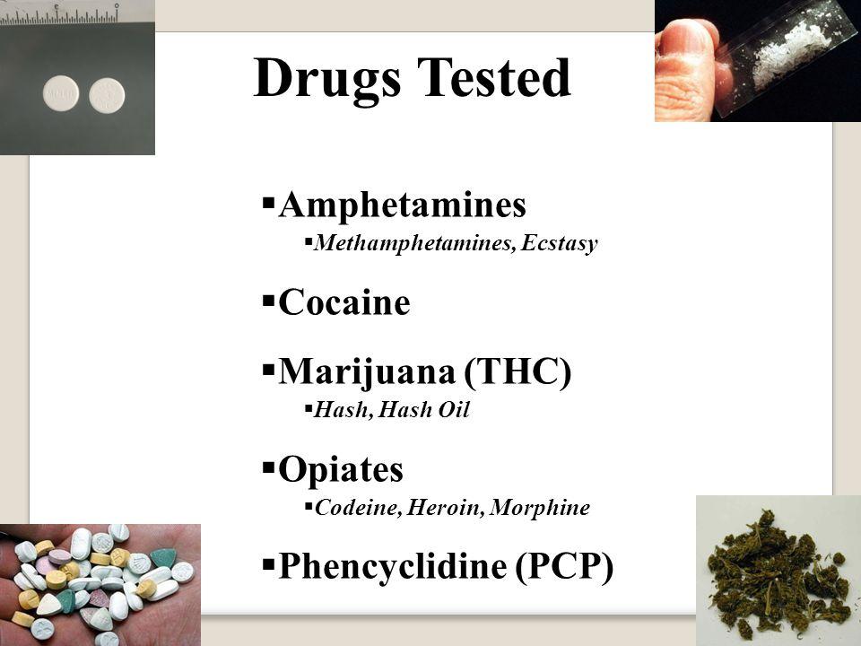 Drugs Tested  Amphetamines  Methamphetamines, Ecstasy  Cocaine  Marijuana (THC)  Hash, Hash Oil  Opiates  Codeine, Heroin, Morphine  Phencyclidine (PCP)