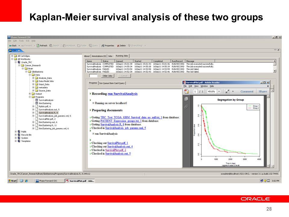 Kaplan-Meier survival analysis of these two groups 28