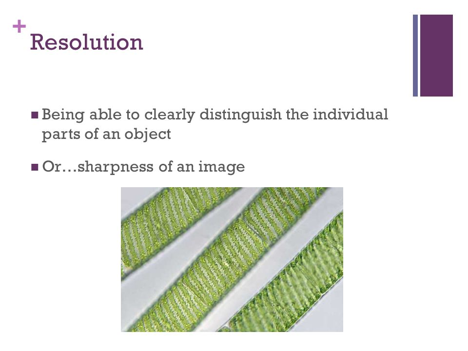 + Resolution Being able to clearly distinguish the individual parts of an object Or…sharpness of an image