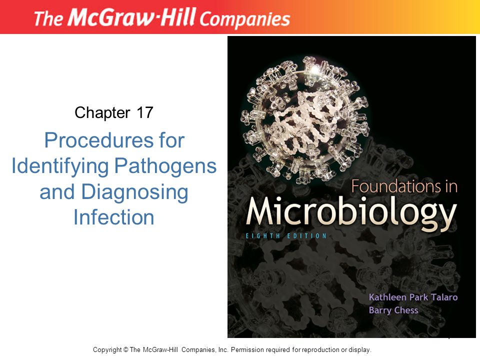 Chapter 17 Procedures for Identifying Pathogens and Diagnosing Infection Copyright © The McGraw-Hill Companies, Inc. Permission required for reproduct