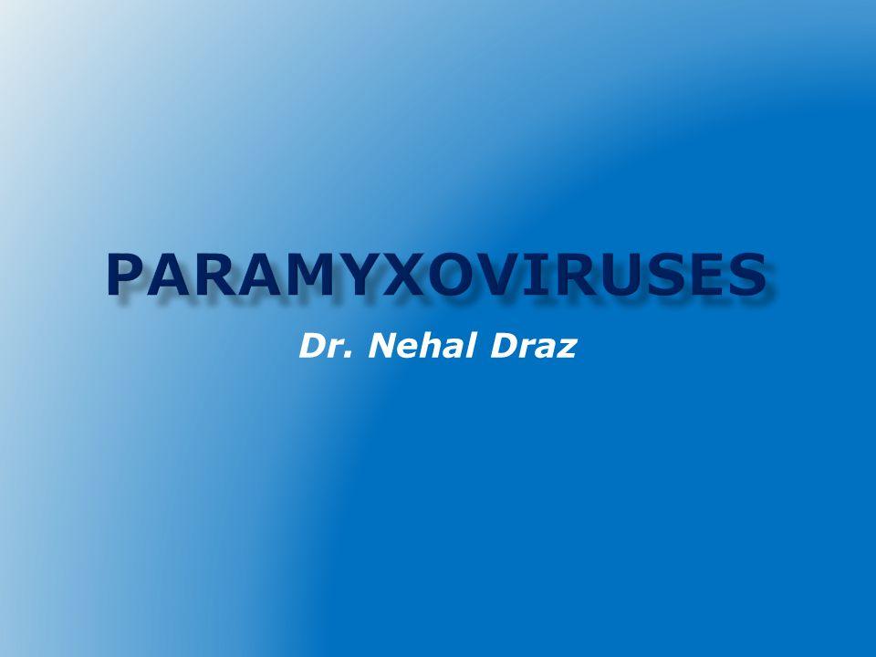 Dr. Nehal Draz