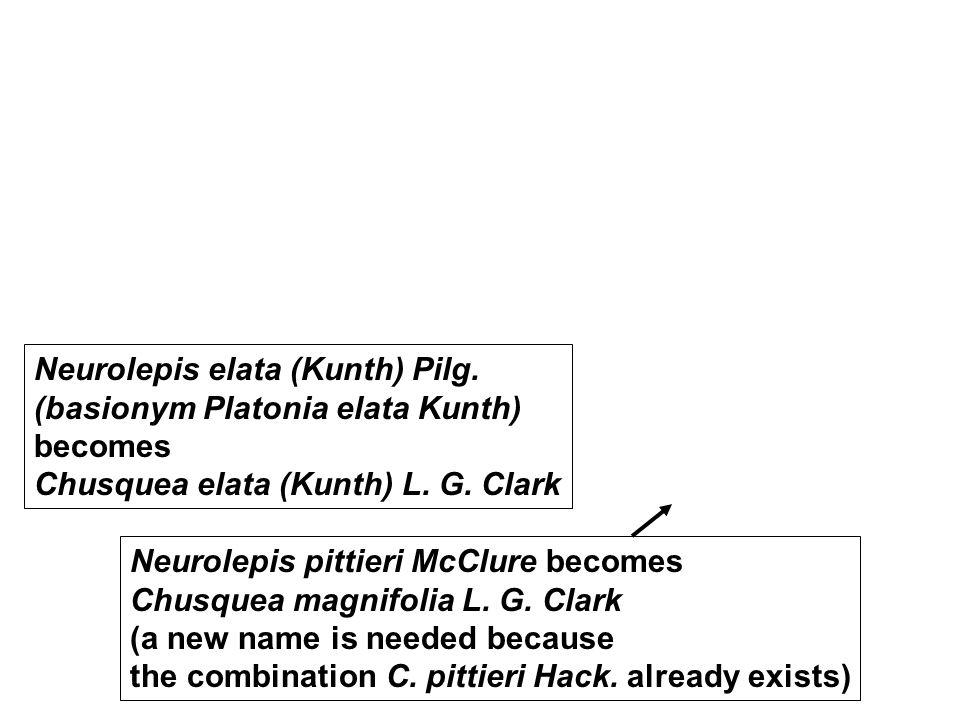 Neurolepis elata (Kunth) Pilg. (basionym Platonia elata Kunth) becomes Chusquea elata (Kunth) L. G. Clark Neurolepis pittieri McClure becomes Chusquea