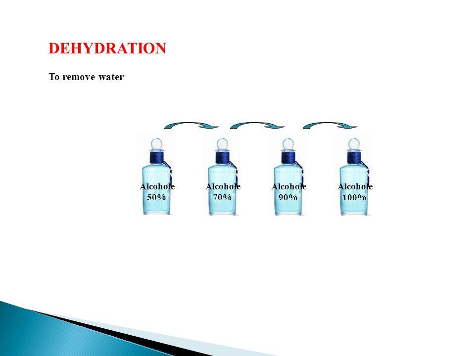 DEHYDRATION To remove water Alcohole 50% Alcohole 70% Alcohole 90% Alcohole 100%