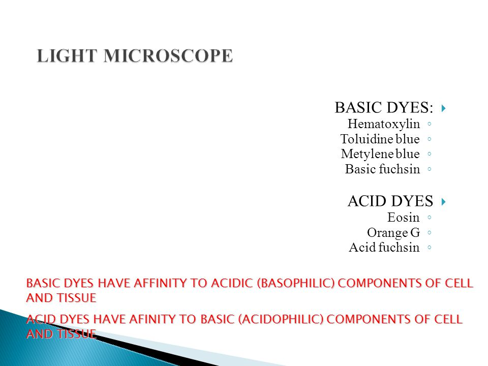  BASIC DYES: ◦ Hematoxylin ◦ Toluidine blue ◦ Metylene blue ◦ Basic fuchsin  ACID DYES ◦ Eosin ◦ Orange G ◦ Acid fuchsin BASIC DYES HAVE AFFINITY TO