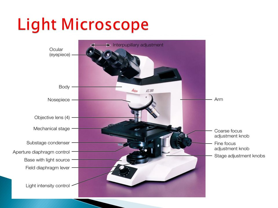 FLUORESCENCE MICROSCOPE : are extremely important in immunohistological staining.dectation of anti- bodies