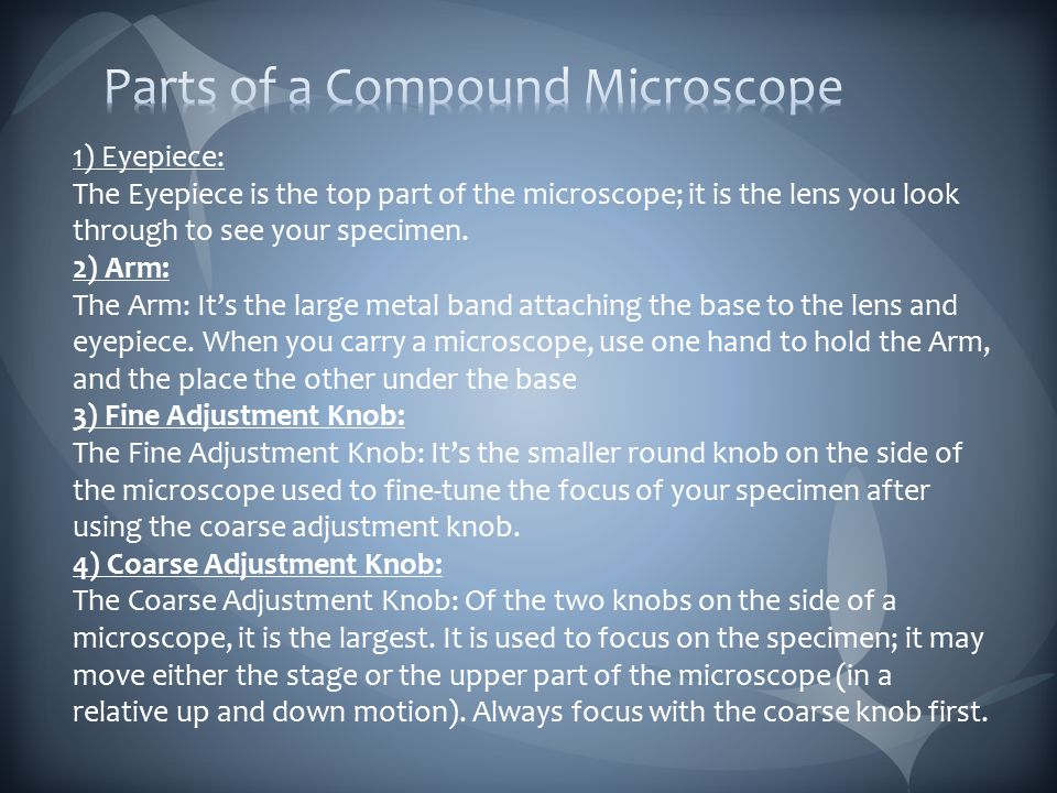 5) Objective Lenses Objective lenses: Most microscopes have 2, 3, or more lenses that magnify at different powers.